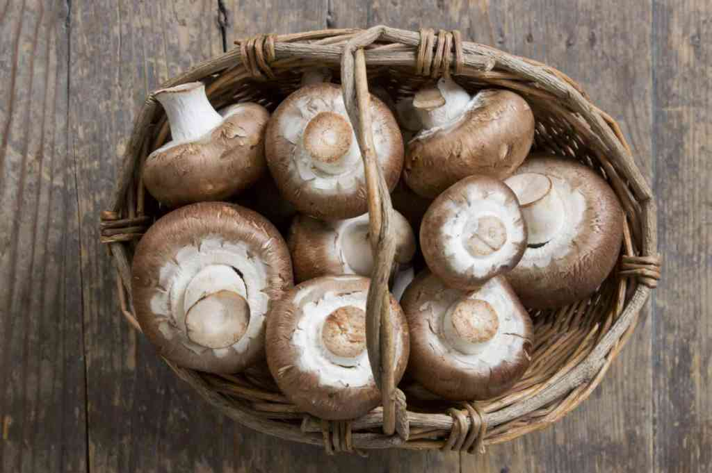 Top Foods to Keep your Immune System Strong Gettyimages-186473156-565bc8235f9b5835e470217a